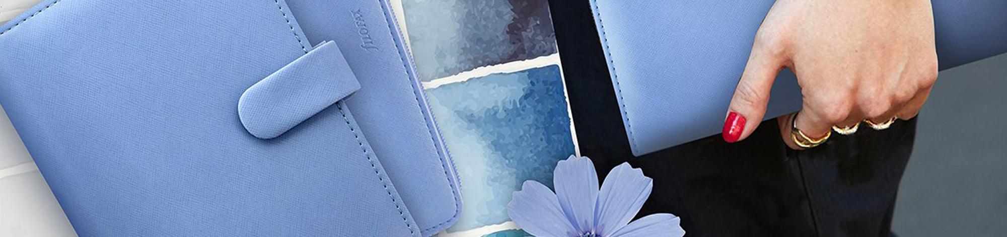 vista blue planner