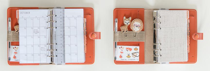 orange organizer